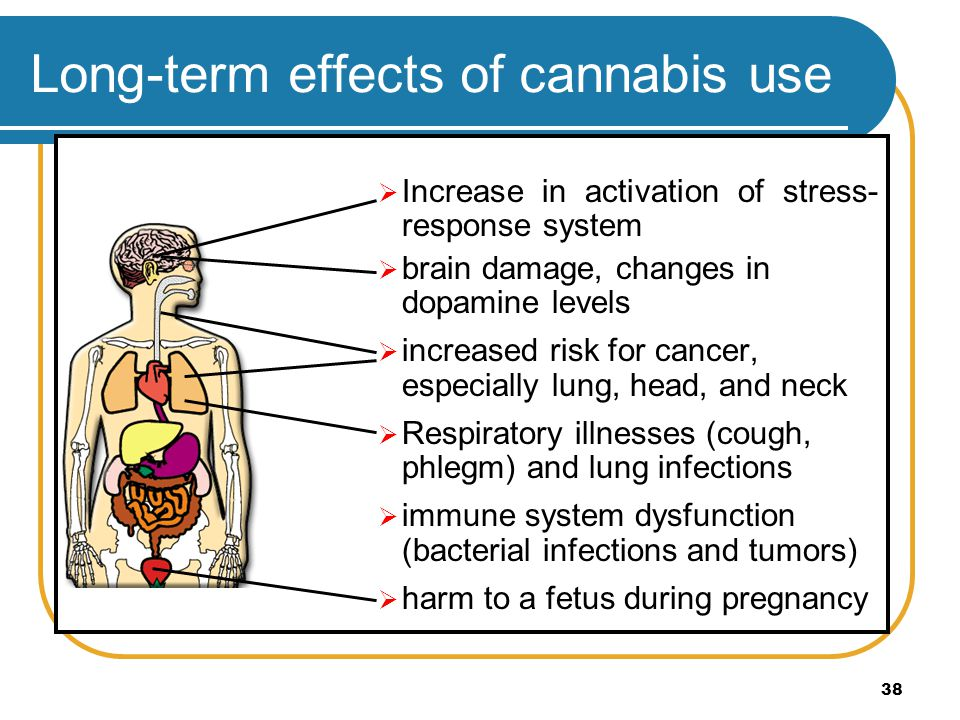 Long-term effects of cannabis use