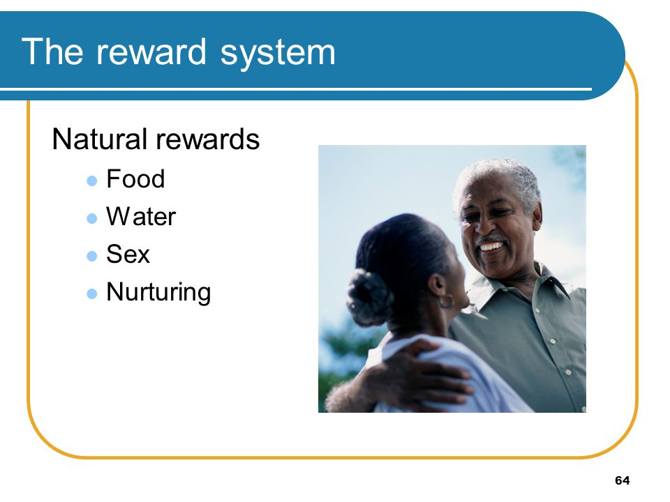 The reward system Natural rewards Food Water Sex Nurturing
