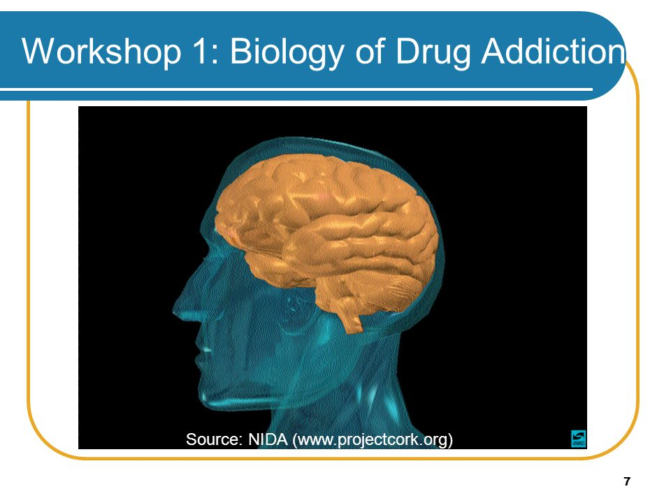Workshop 1: Biology of Drug Addiction