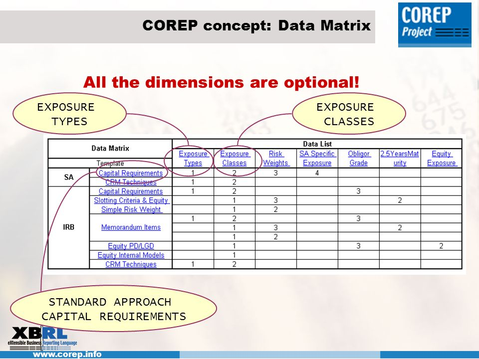 COREP concept: Data Matrix