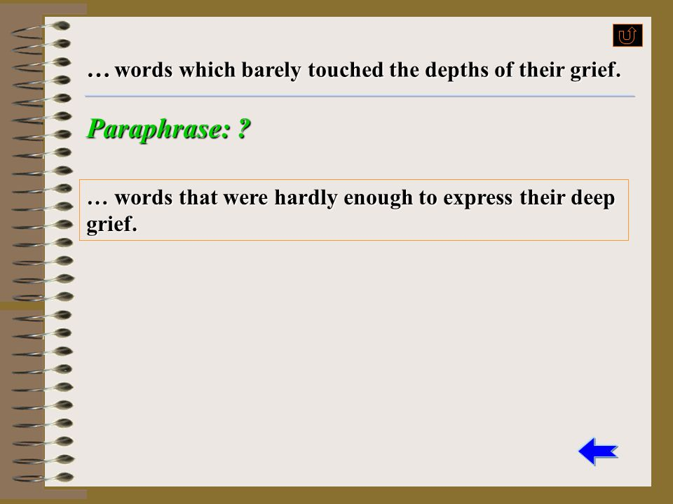 Paraphrase: … words which barely touched the depths of their grief.