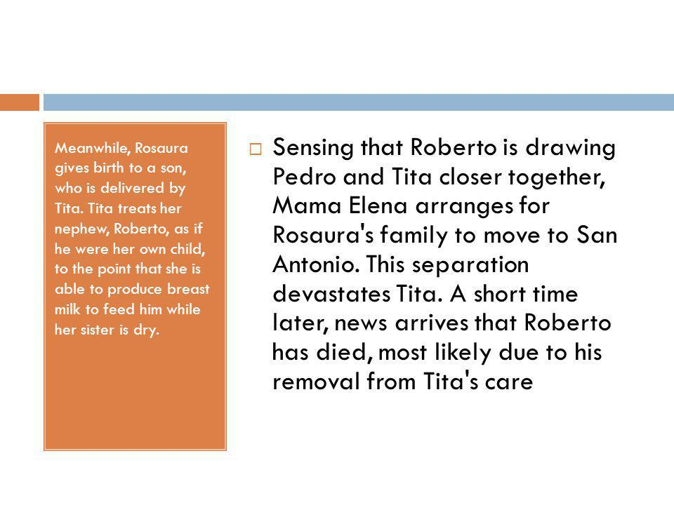 Meanwhile, Rosaura gives birth to a son, who is delivered by Tita