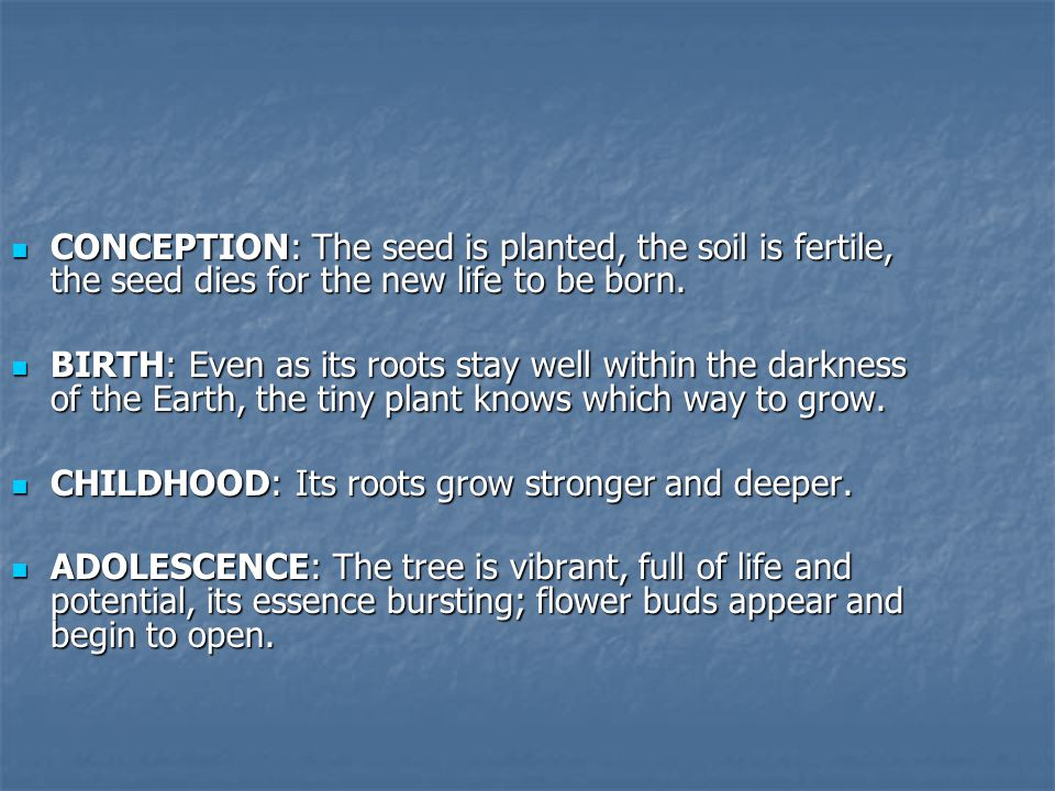 CONCEPTION: The seed is planted, the soil is fertile, the seed dies for the new life to be born.