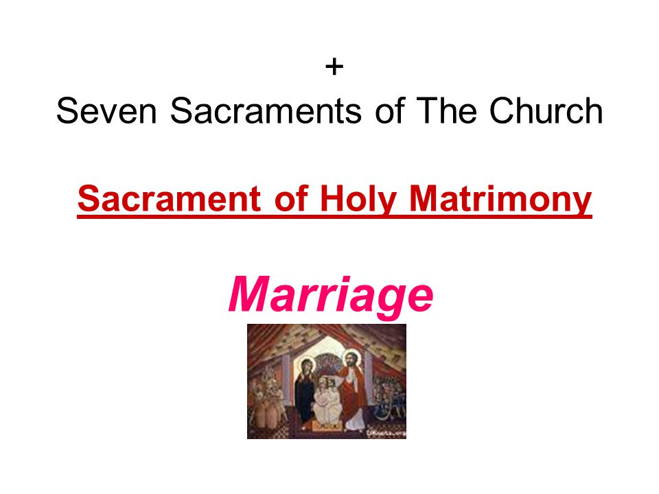 + Seven Sacraments of The Church Sacrament of Holy Matrimony Marriage