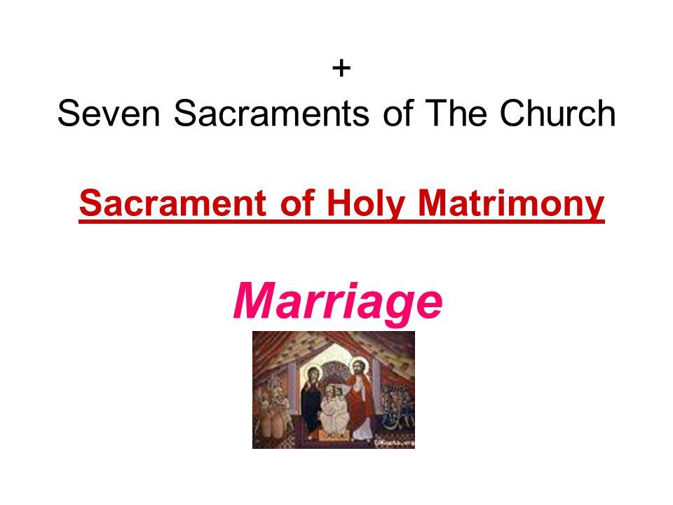 + Seven Sacraments of The Church Sacrament of Holy Matrimony Marriage