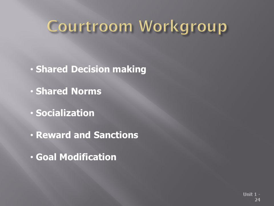 Courtroom Workgroup Shared Decision making Shared Norms Socialization