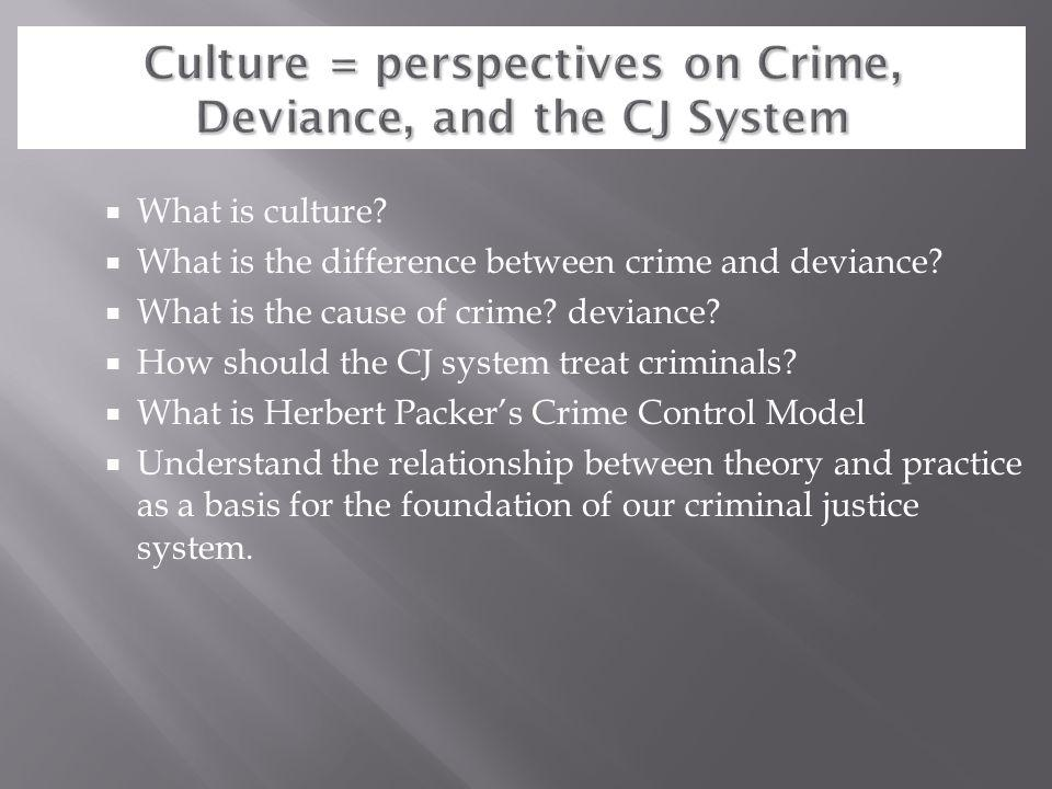 Culture = perspectives on Crime, Deviance, and the CJ System