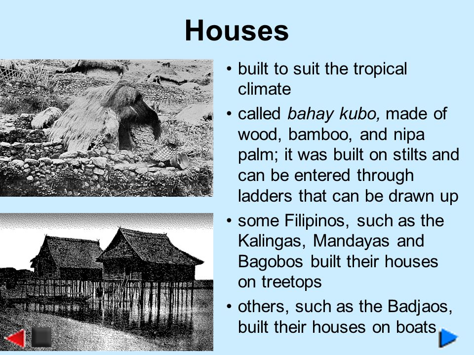 Houses built to suit the tropical climate