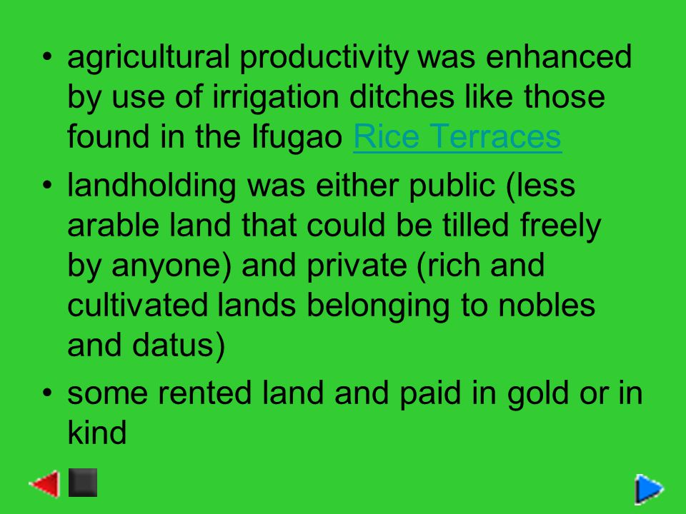 agricultural productivity was enhanced by use of irrigation ditches like those found in the Ifugao Rice Terraces