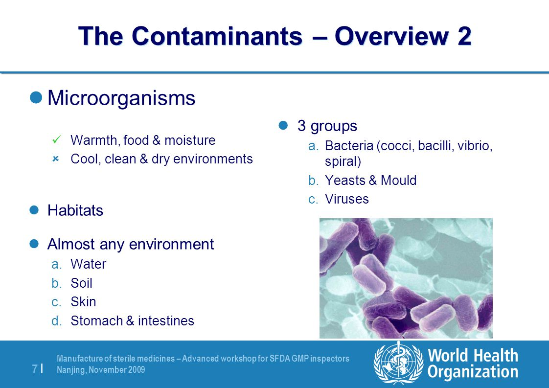 The Contaminants – Overview 2