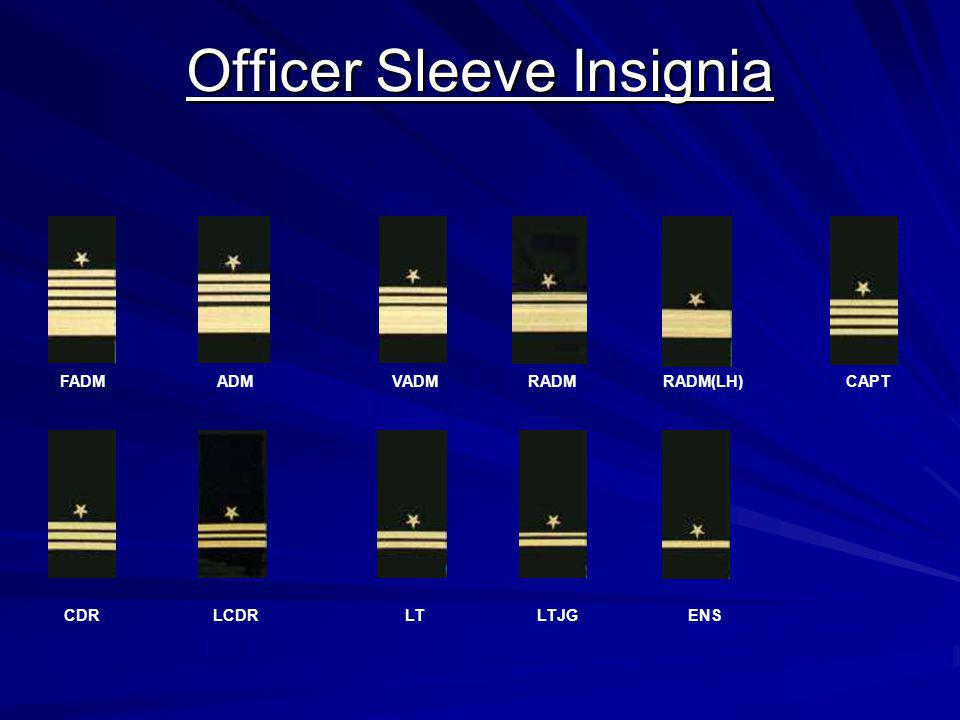Officer Sleeve Insignia