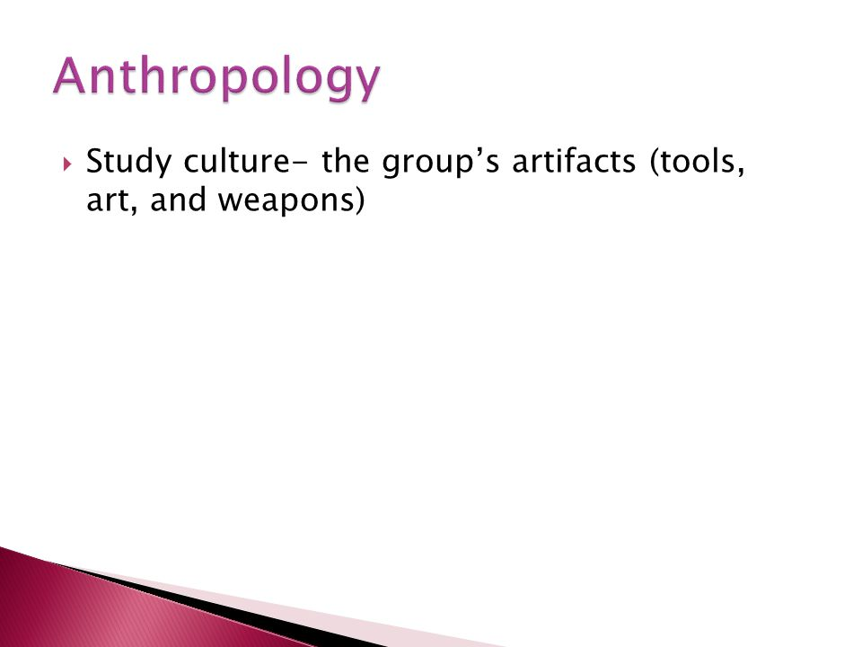 Anthropology Study culture- the group's artifacts (tools, art, and weapons)