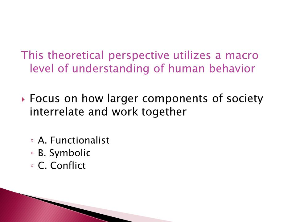 This theoretical perspective utilizes a macro level of understanding of human behavior