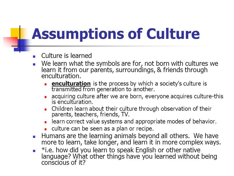 Assumptions of Culture