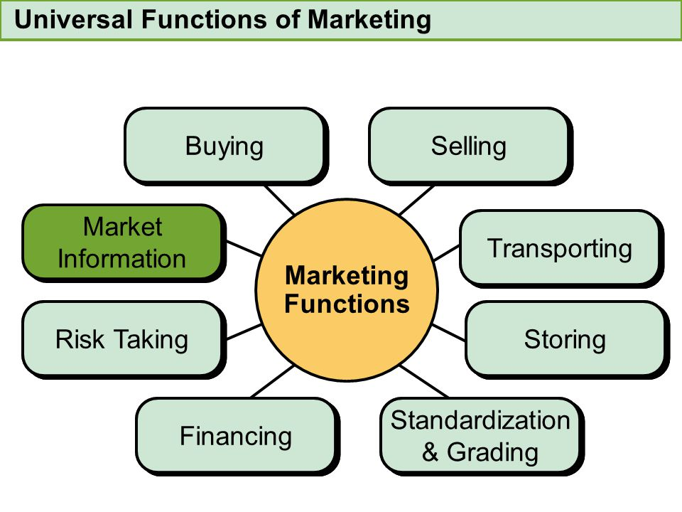 Universal Functions of Marketing