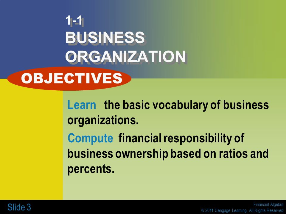 1-1 BUSINESS ORGANIZATION