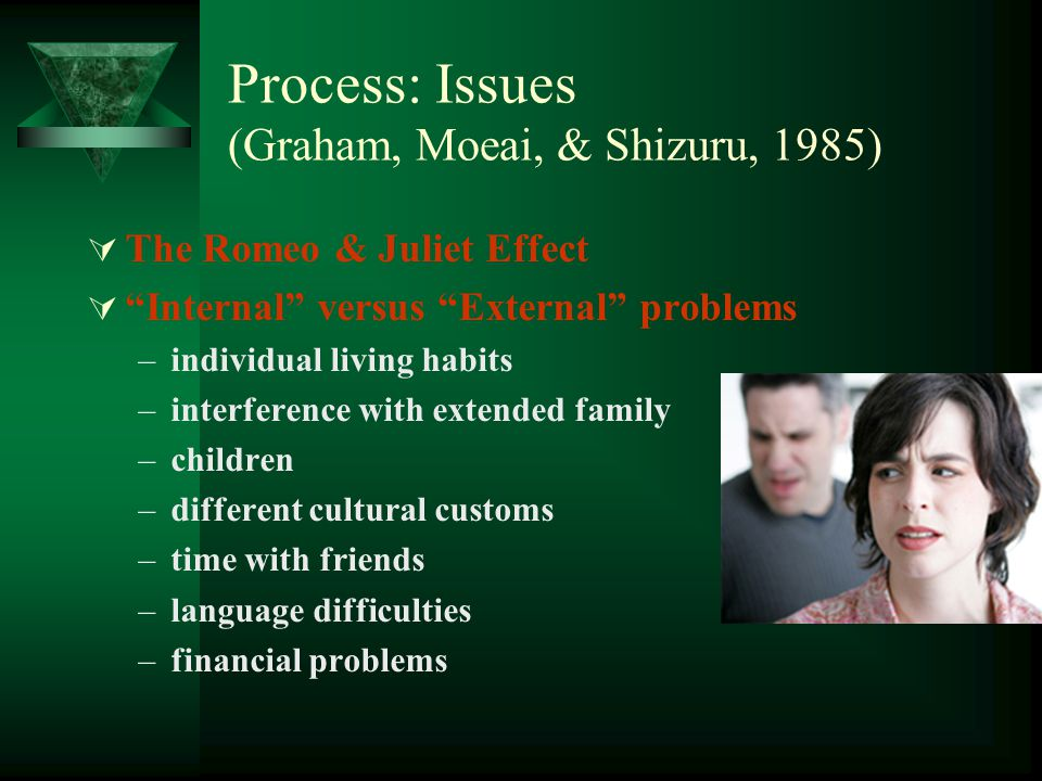 Process: Issues (Graham, Moeai, & Shizuru, 1985)
