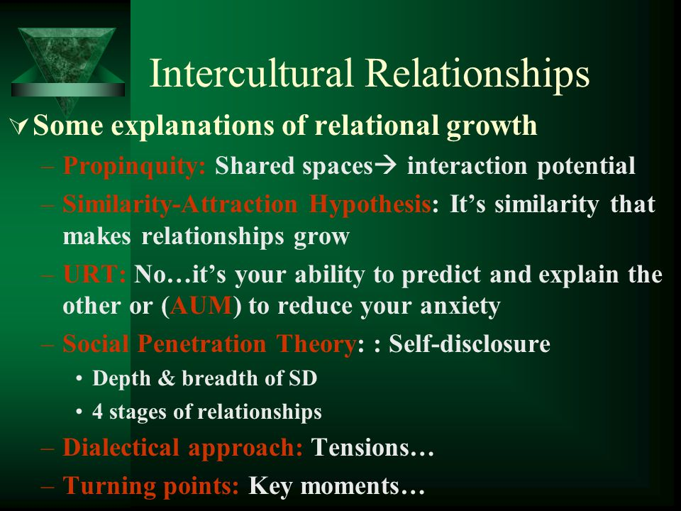 Intercultural Relationships