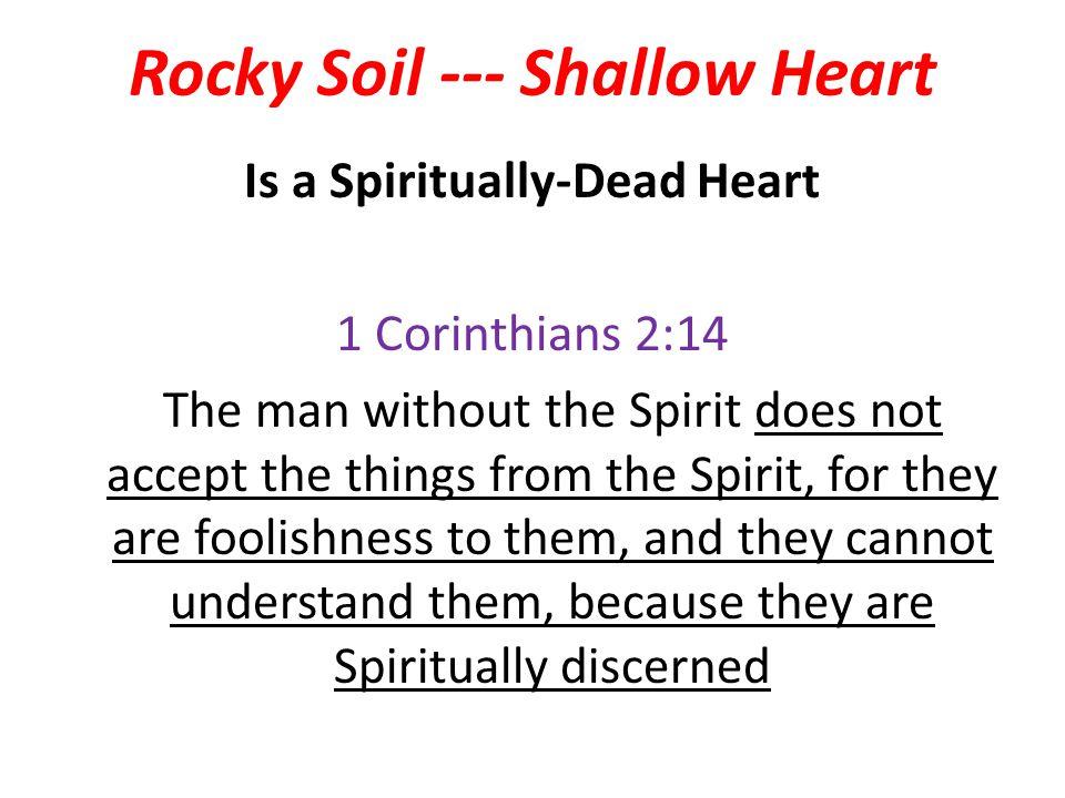 Rocky Soil --- Shallow Heart