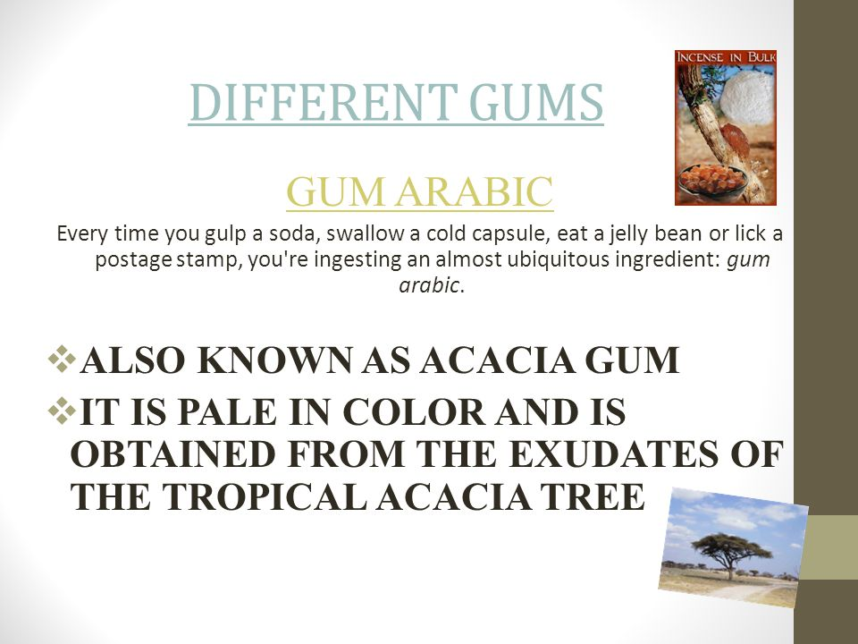 DIFFERENT GUMS GUM ARABIC ALSO KNOWN AS ACACIA GUM