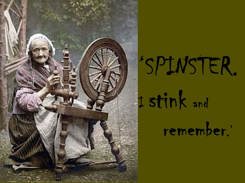 'SPINSTER. I stink and remember.'