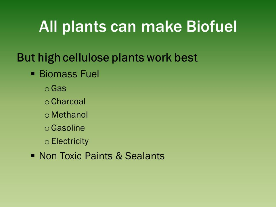 All plants can make Biofuel