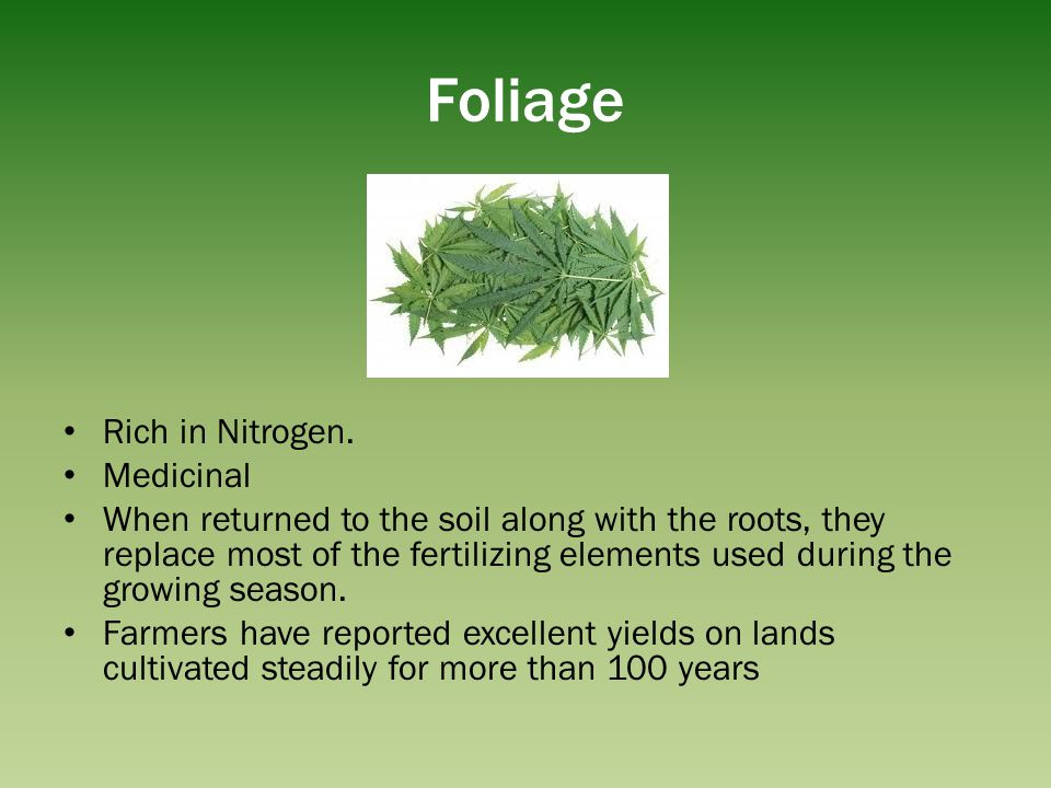 Foliage Rich in Nitrogen. Medicinal