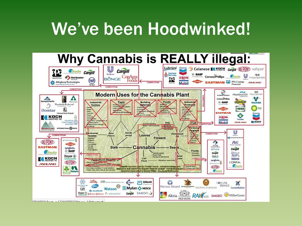 We've been Hoodwinked! Repression and control