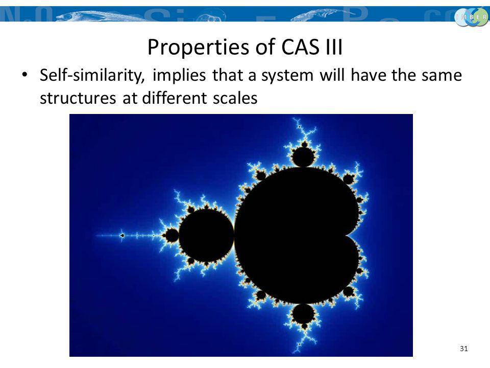 Properties of CAS III Self-similarity, implies that a system will have the same structures at different scales.