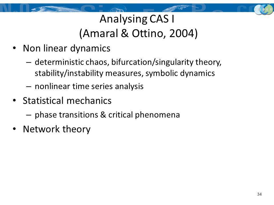 Analysing CAS I (Amaral & Ottino, 2004)