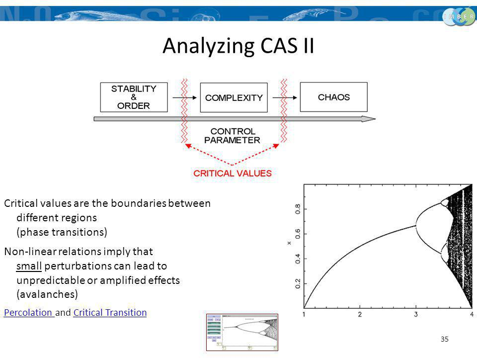 Analyzing CAS II Critical values are the boundaries between different regions (phase transitions)
