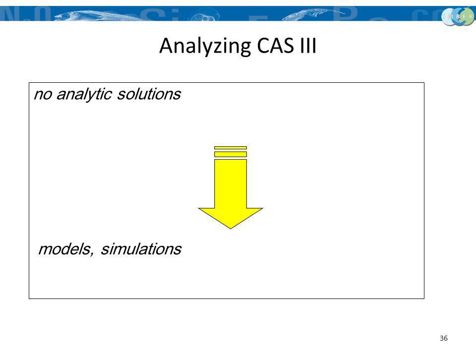 Analyzing CAS III models, simulations no analytic solutions