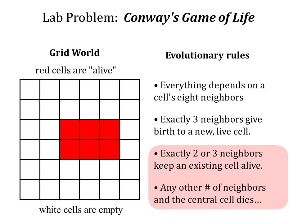 Lab Problem: Conway s Game of Life