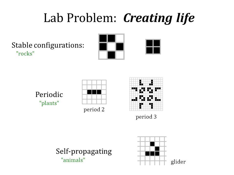 Lab Problem: Creating life