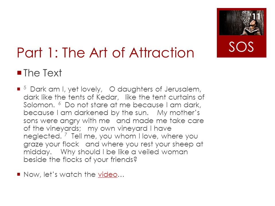 Part 1: The Art of Attraction