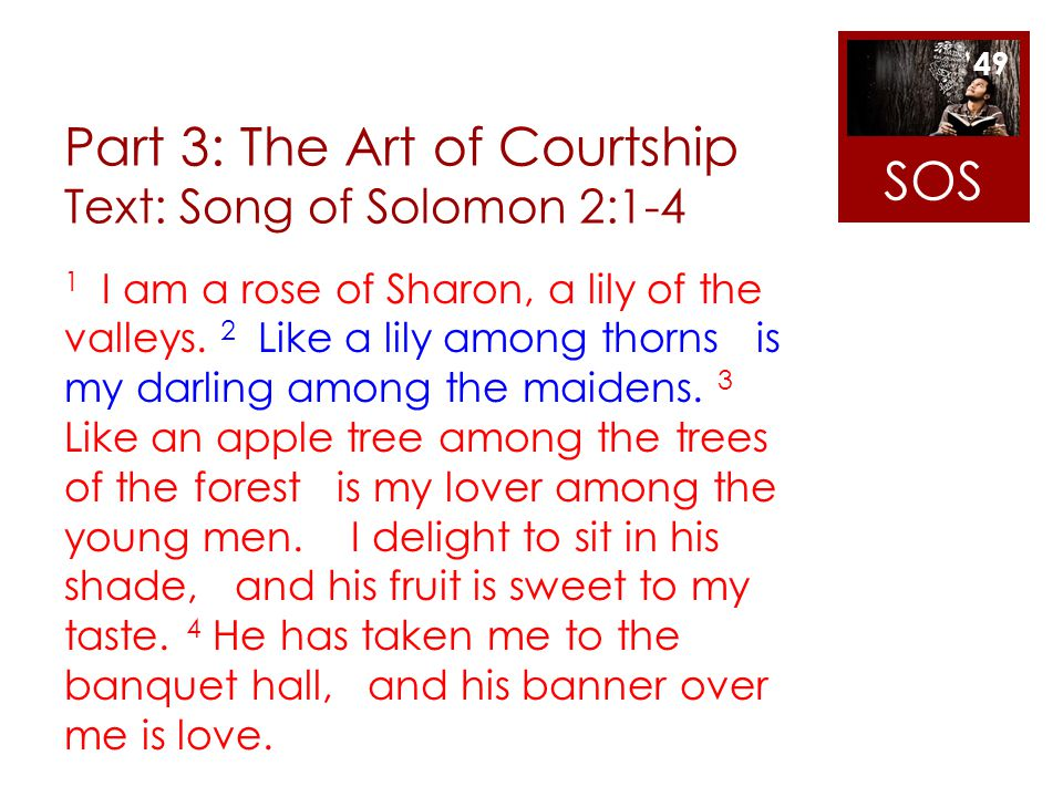 Part 3: The Art of Courtship Text: Song of Solomon 2:1-4