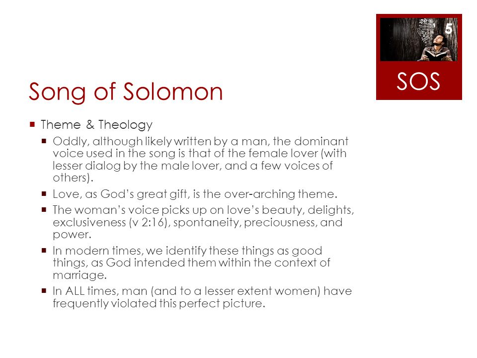 SOS Song of Solomon Theme & Theology