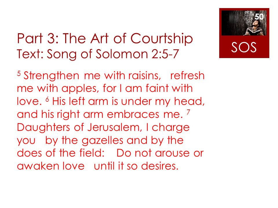 Part 3: The Art of Courtship Text: Song of Solomon 2:5-7
