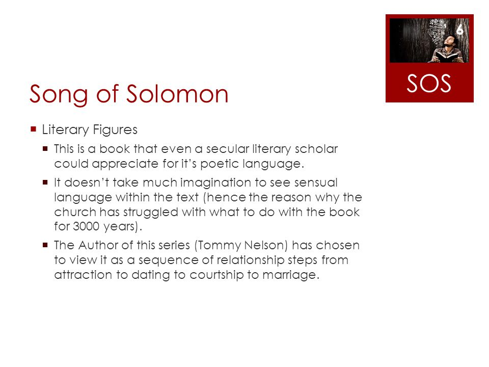 SOS Song of Solomon Literary Figures