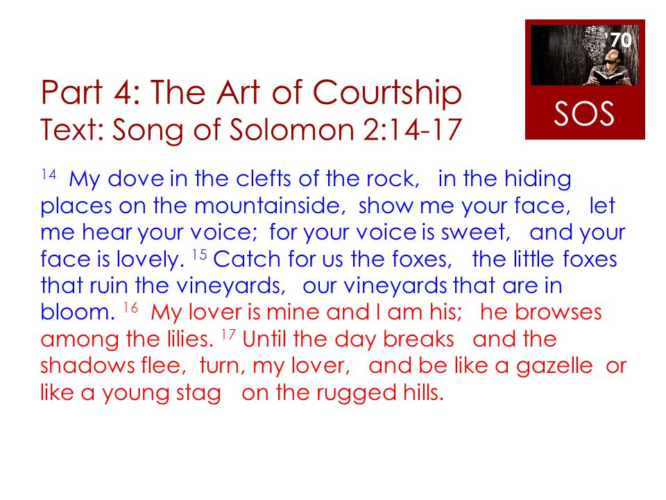 Part 4: The Art of Courtship Text: Song of Solomon 2:14-17