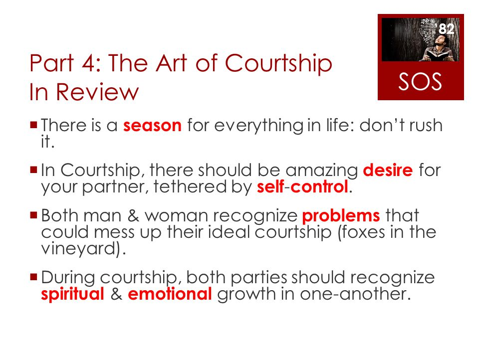 Part 4: The Art of Courtship In Review