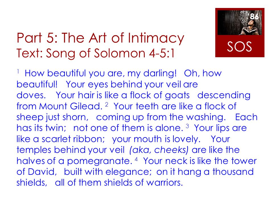 Part 5: The Art of Intimacy Text: Song of Solomon 4-5:1