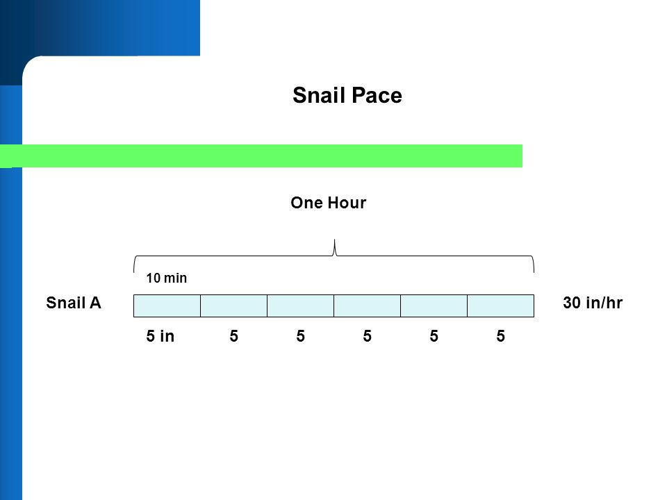 Snail Pace One Hour 10 min Snail A 30 in/hr 5 in 5 5 5 5 5