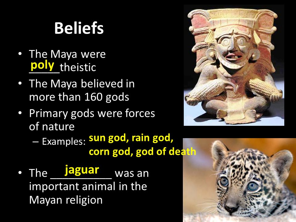 Beliefs poly jaguar The Maya were _____theistic