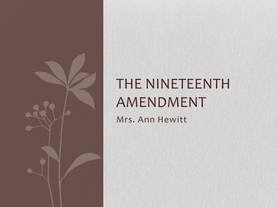 The Nineteenth Amendment