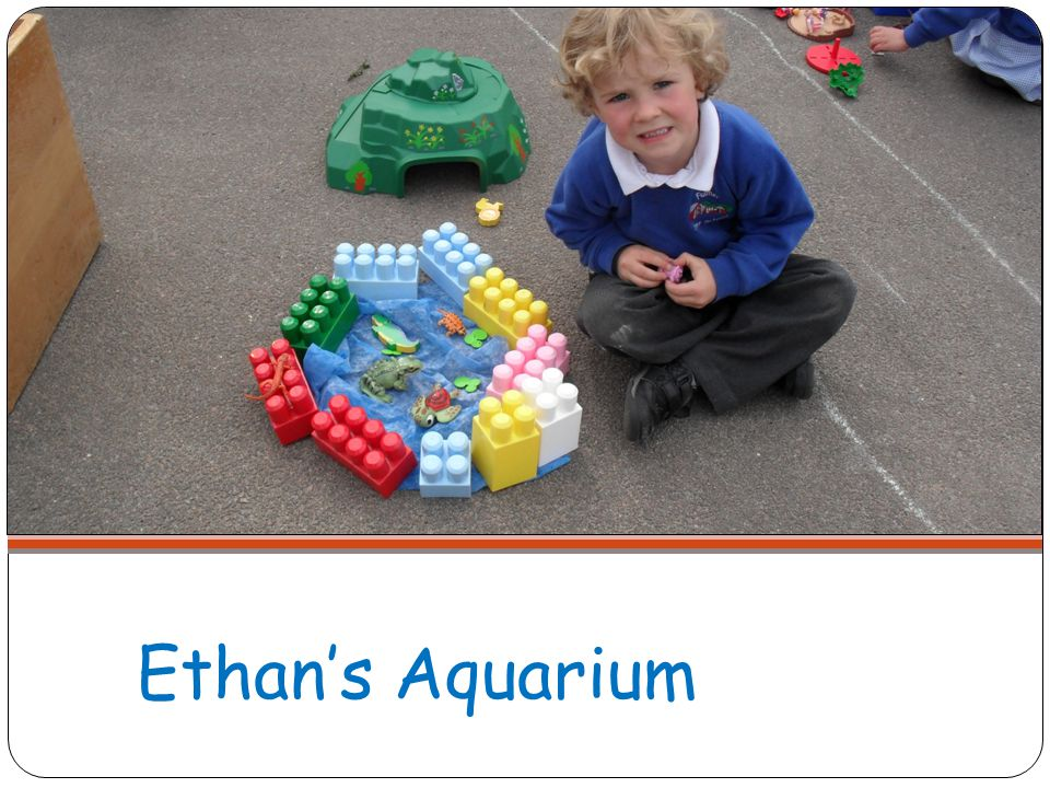 Ethan's Aquarium