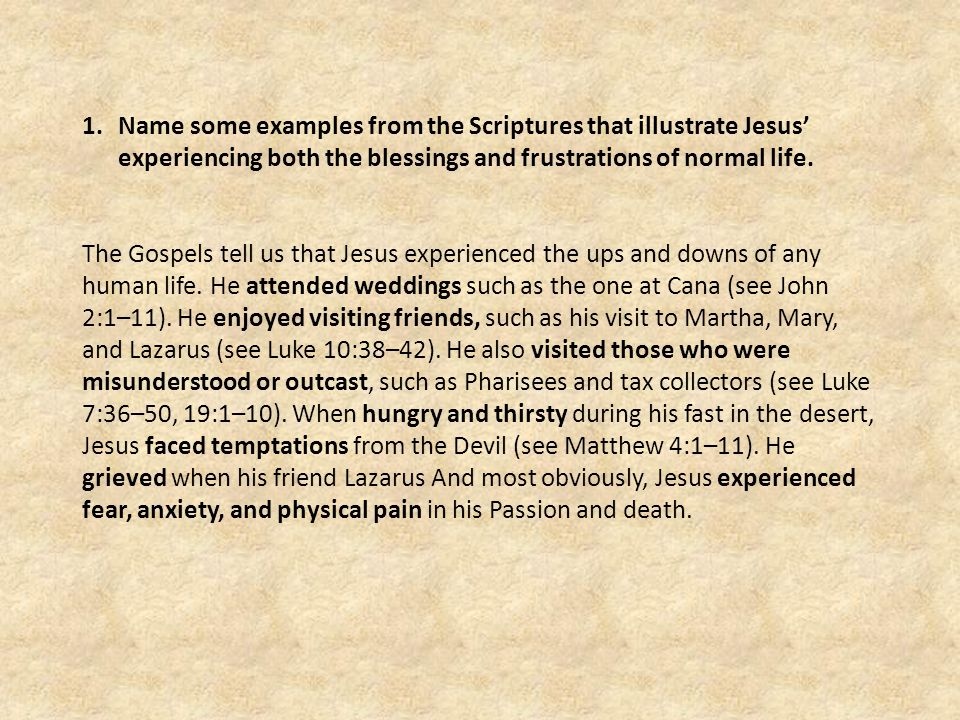 Name some examples from the Scriptures that illustrate Jesus' experiencing both the blessings and frustrations of normal life.