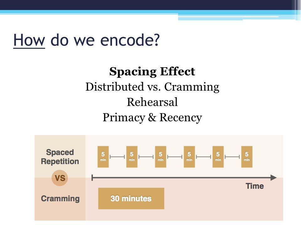 Spacing Effect Distributed vs. Cramming Rehearsal Primacy & Recency