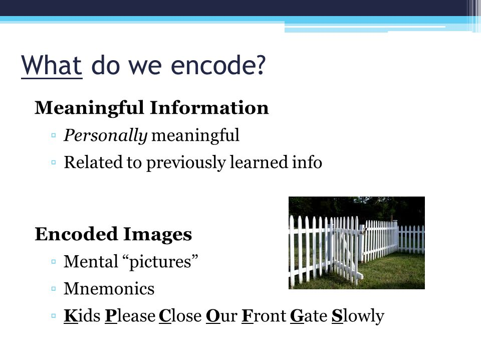 What do we encode Meaningful Information Encoded Images