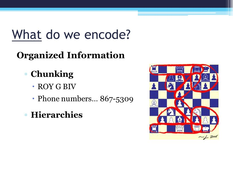 What do we encode Organized Information Chunking Hierarchies